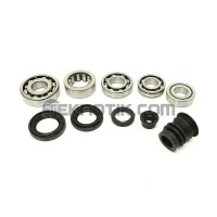 Synchrotech H/F-Series Bearing and Seal Kit