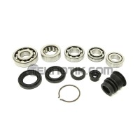 Synchrotech B-Series Hydro Bearing Seal Kit