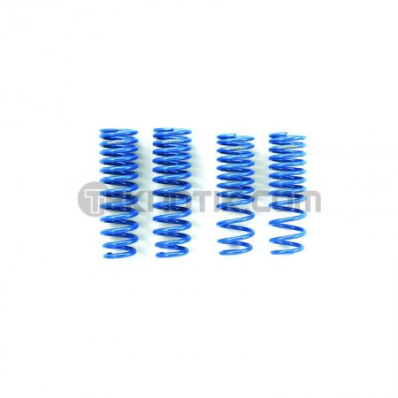 Spoon Progressive Lowering Springs
