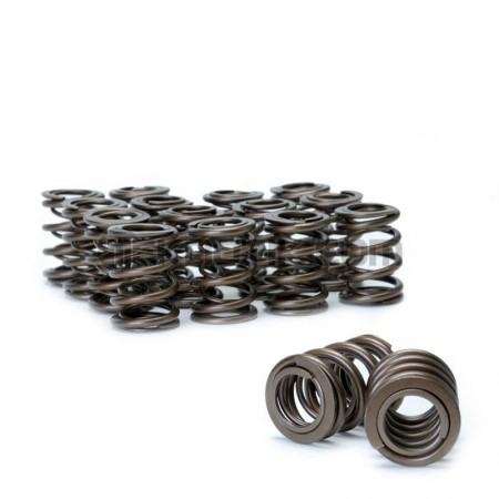 Skunk2 F, H-Series VTEC Alpha Valve Springs